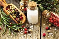 Rosemary, Salz und verschiedene Arten des Pfeffers Stockfoto