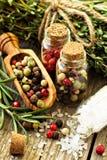 Rosemary, Salz und verschiedene Arten des Pfeffers Lizenzfreie Stockfotos