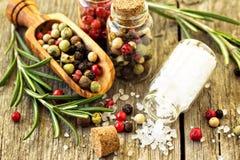 Rosemary, Salz und verschiedene Arten des Pfeffers Stockbilder