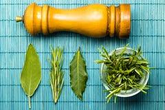 Rosemary, sauge, et feuilles de laurier avec un moulin de poivre Photographie stock