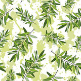 Rosemary seamless pattern Stock Photo