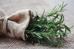 Rosemary in Small Burlap Bag Royalty Free Stock Photo