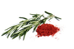 Rosemary and spices isolates on white Royalty Free Stock Images