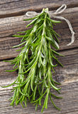 Rosemary spices Royalty Free Stock Photos