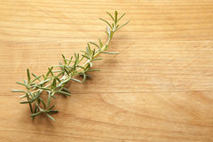 Rosemary Sprig on Cutting Board Royalty Free Stock Photo