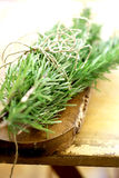 Rosemary sprigs Stock Images