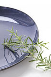 Rosemary sprigs on a blue plate Royalty Free Stock Image