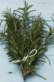 Rosemary sprigs. A bunch of rosemary sprigs tied together on a blue wooden board Stock Image