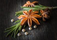 Rosemary, star anise, white pepper stock images