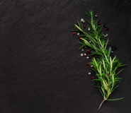 Rosemary on stone background with some spice Royalty Free Stock Image
