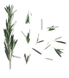 Rosemary on the table Royalty Free Stock Photos