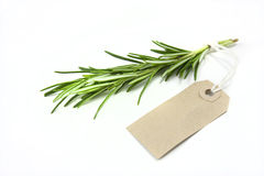 Rosemary and tag Stock Photo