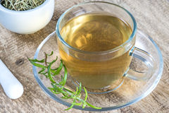 Rosemary tea Royalty Free Stock Image