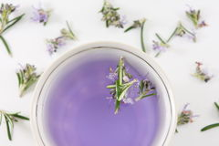 Rosemary tea with fresh rosemary flowers Royalty Free Stock Image