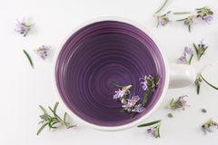 Rosemary tea with fresh rosemary flowers Royalty Free Stock Images