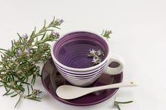 Rosemary tea with fresh rosemary flowers Royalty Free Stock Photos