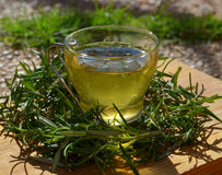 Rosemary tea. Royalty Free Stock Image