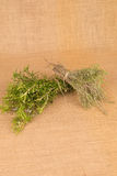 Rosemary and thyme Stock Image