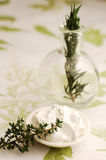 Rosemary and Thyme Body Treatment Royalty Free Stock Photo
