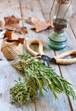 Rosemary and thyme. Bunches of rosemary and thyme with old-fashioned rusty scissors abd rustic lantern. Selective focus Stock Photography