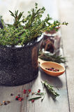 Rosemary and thyme Royalty Free Stock Image
