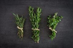 Rosemary Thyme Herbs Royaltyfri Bild