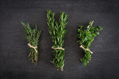Rosemary Thyme Herbs Royalty Free Stock Image