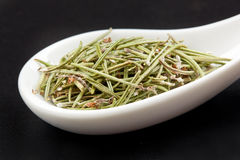 Rosemary in white spoon Royalty Free Stock Image
