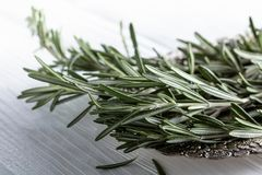 Rosemary on a white wooden table. Stock Photo