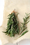 Rosemary on wooden background Stock Photos