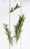 Rosemary on wooden background Royalty Free Stock Photo
