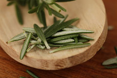 Rosemary on a wooden spoon Royalty Free Stock Photo