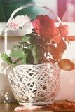 rosen Stockbild