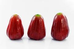 Rosen-Apfel lizenzfreie stockfotos