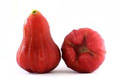 Rosen-Apfel Stockbilder