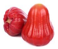 Rosen-Apfel lokalisiert auf dem weißen Hintergrund lizenzfreie stockbilder
