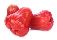 Rosen-Apfel lokalisiert auf dem weißen Hintergrund stockfotografie
