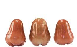 Rosen-Apfel lokalisiert mit weißem Hintergrund Lizenzfreie Stockfotografie