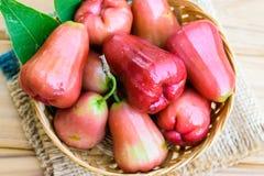 Rosen-Apfelfrucht Lizenzfreie Stockfotos