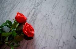 Rosen auf einer weißen Marmortabelle lizenzfreie stockfotos