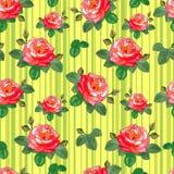 Rosen auf gelbem gestreiftem Hintergrund Stockbilder