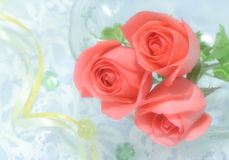 Rosen auf Voile Lizenzfreie Stockbilder