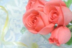 Rosen auf Voile mit Robbin lizenzfreie stockfotos