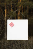 Rosen-Aufkleber mit Anmerkung Liebe auf weißem Brett Stockfotos