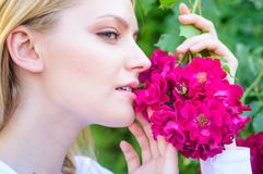 Rosen-Auszugöl-Aromaprodukt Mädchen und Blumen auf Naturhintergrund Naturkosmetik und Hautpflegeprodukte stockbild