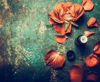 Rosen blüht mit dem Blumenblatt und ätherischem Öl auf rustikalem Weinlesehintergrund, Draufsicht Lizenzfreie Stockfotos