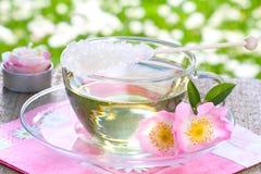 Rosen-Blütentee, wilde Rosen stockbild