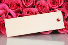 Rosen blüht am Valentinsgruß oder am Muttertag mit Grußkarte Stockfoto