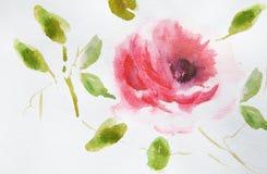 Rosen-Blume mit grünen Blättern Stockbild