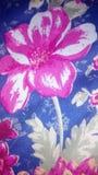 Rosen-Blume nett stockfotografie